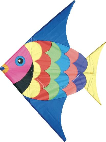 Outdoor - Kite, giant fish
